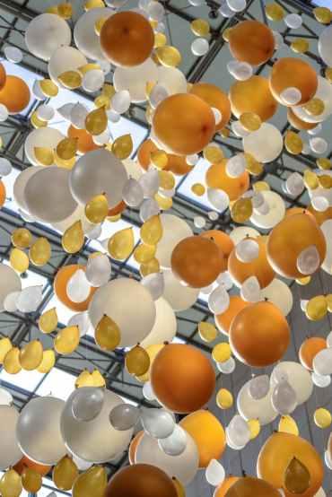 Photo by PhotoMIX Ltd. on Pexels.com